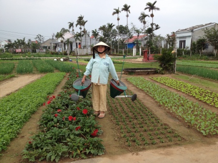 A local Vietnamese woman waters her crops on her vegetable farm