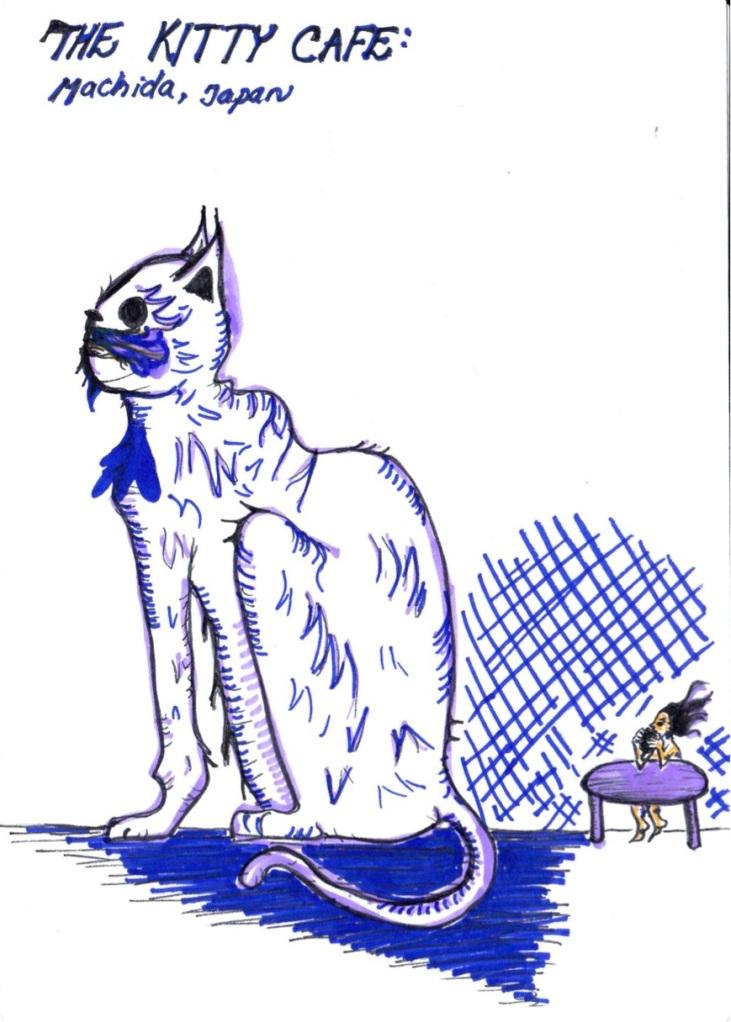 10. Cat Cafe